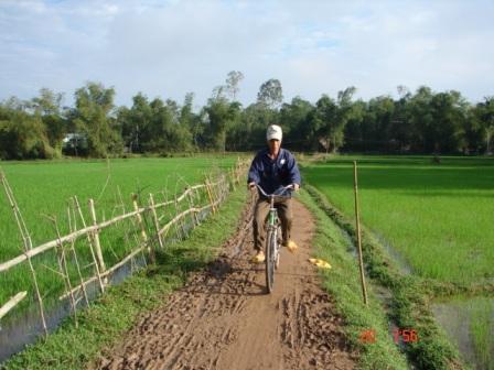 Visit the paddy/BIKING MEKONG DELTA